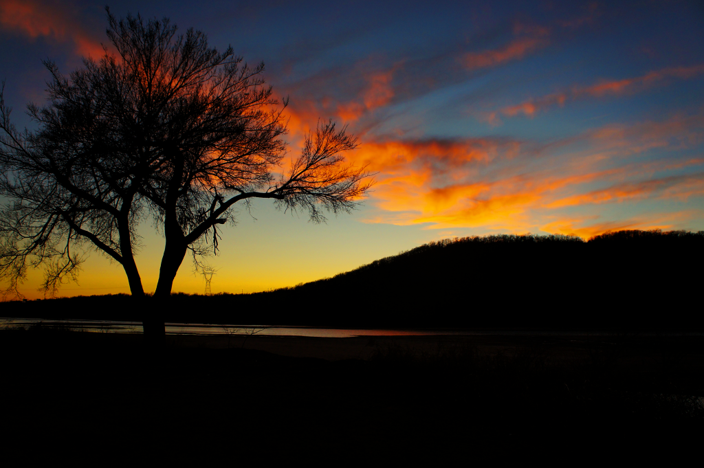 A lone tree on the banks of the Arkansas River at sunset.